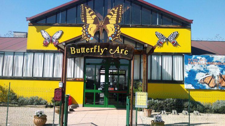 immagine punto di interesse Butterfly Arc – Casa delle Farfalle e Bosco delle Fate