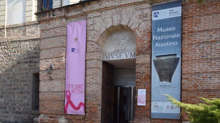 immagine punto di interesse Museo Nazionale Atestino