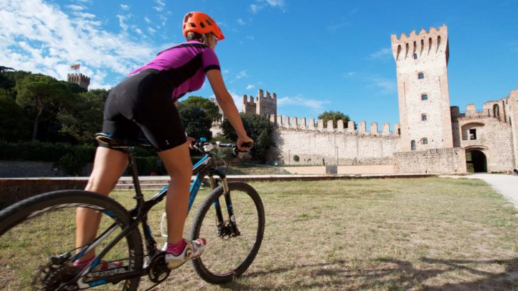 immagine punto di interesse Castello Carrarese